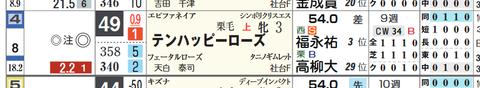 テンハッピーローズ(「コース実績」)