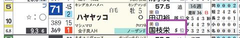 ハヤヤッコ(国枝厩舎)