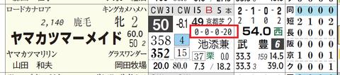ヤマカツマーメイド(厩舎)