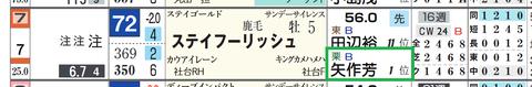 ステイフーリッシュ(矢作厩舎)