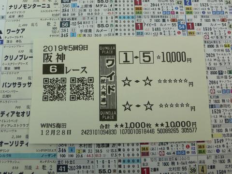 【馬券】5回阪神9日6