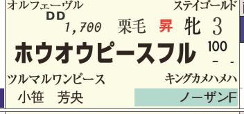 CapD20200214_44