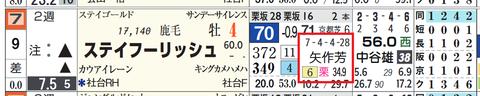 ステイフーリッシュ&矢作厩舎
