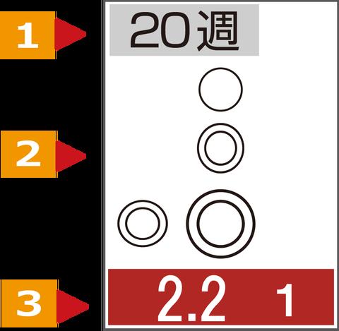 HB新聞縦カラー5