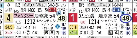 ヤマカツマーメイド(指数)