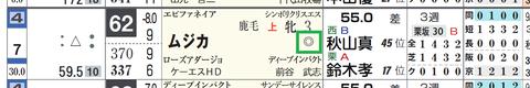 ムジカ(「重馬場適性」)