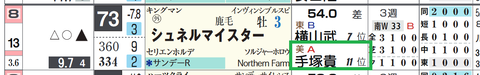 シュネルマイスター(手塚厩舎)