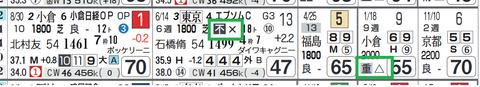サラキア(「馬場レベル」)