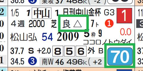 ヒシイグアス(中山金杯)