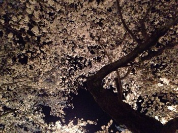 2014-04-05-14-57-35