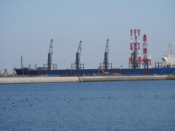 tankar10028