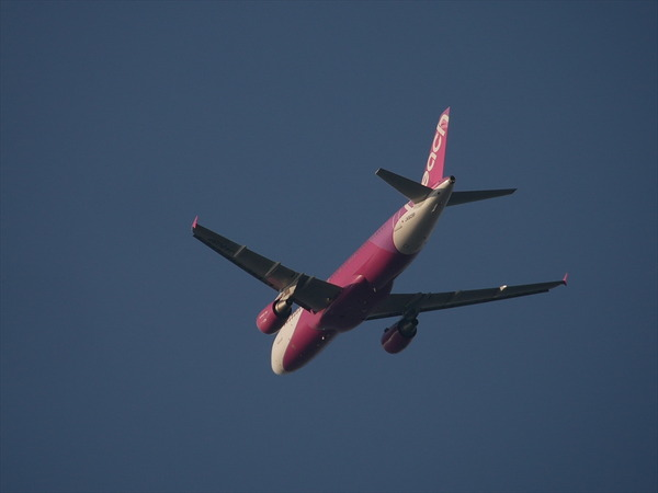 PEACH AIR00149