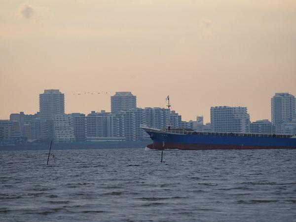 ship10801