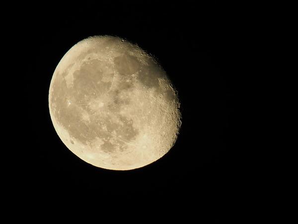 moon10034