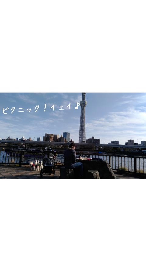 pic_1482590523947