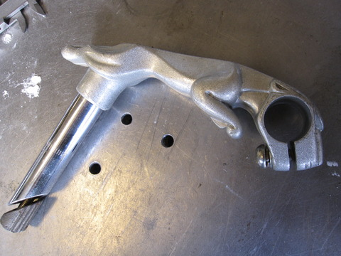 Jaguar Body Stem-02