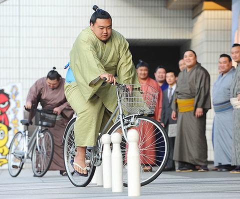 Sumo bicycle training