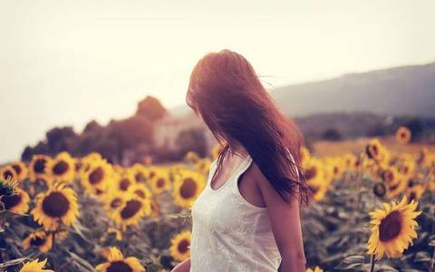 向日葵画像