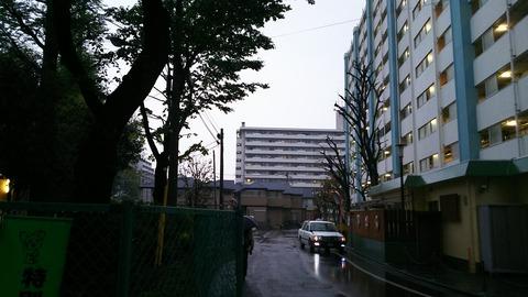 DSC_0677