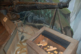 discovery mus.-gold rush