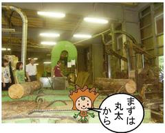 つみ木贈呈ブログ②