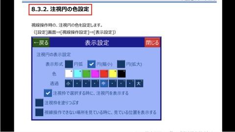 注視円の色設定画面