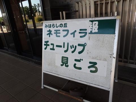P4200084