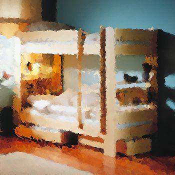 bunk-photo