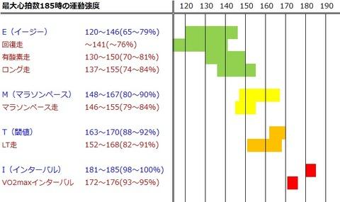 最大心拍数185時の運動強度