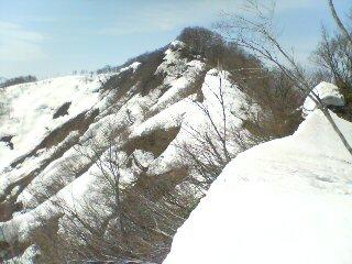 2010041005