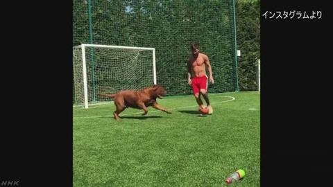 【サッカー】メッシvsイヌ 犬にもボールは触れさせない! メッシ選手の動画が話題に 「さすが王者だ」