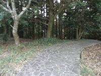 RIMG0633