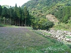 RIMG0051