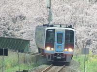 DSCF0726