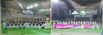 道スポーツ展 (5)