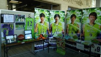 道スポーツ展 (14)