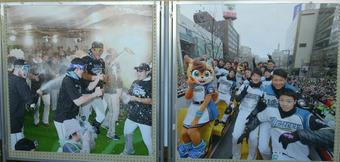 道スポーツ展 (8)
