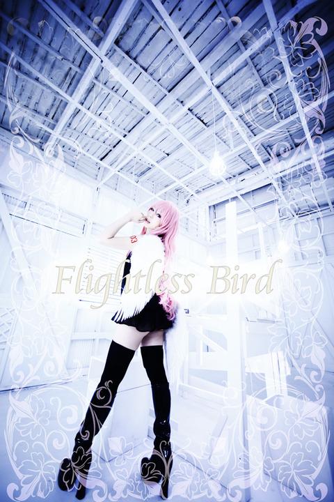 birdluka