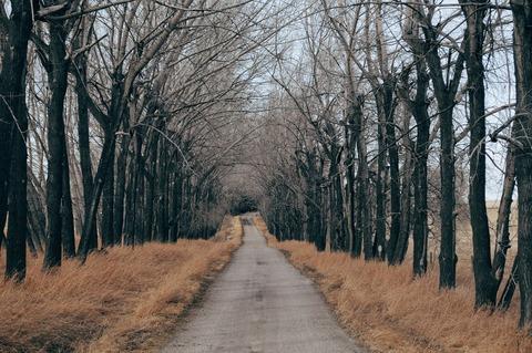road-1246601_1920