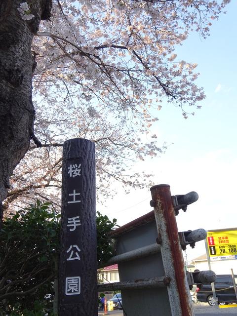 桜土手公園2017