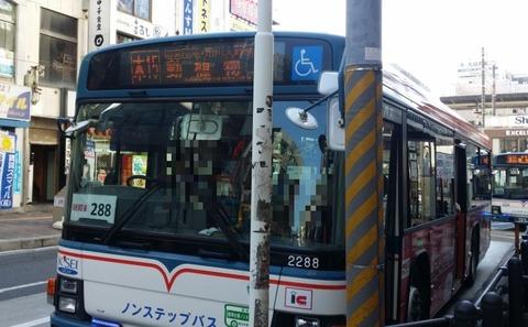 動植物園行き京成バス