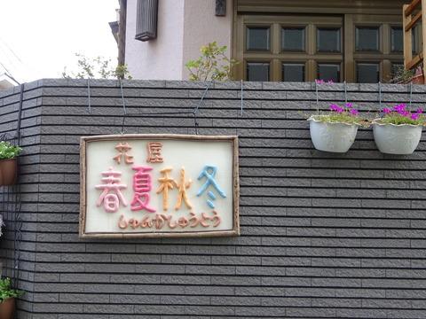 花屋春夏秋冬オープン/市川南