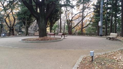 須和田公園の広場