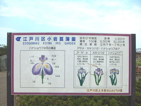 image6_豆知識2