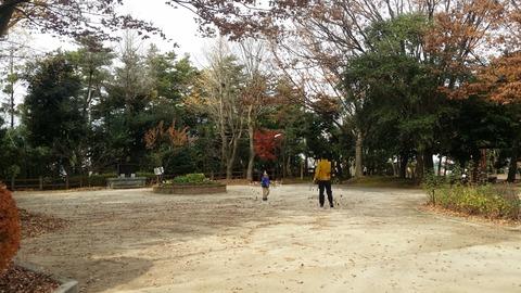 市川市須和田公園の広場