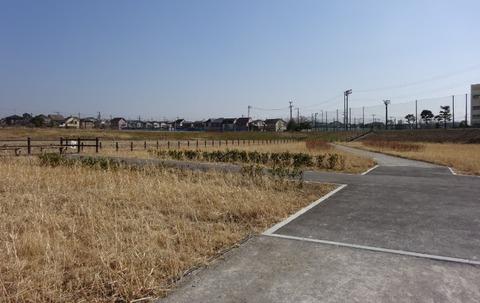 国分川調整池緑地の園路