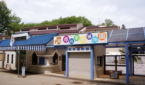 市川市動植物園の正面玄関
