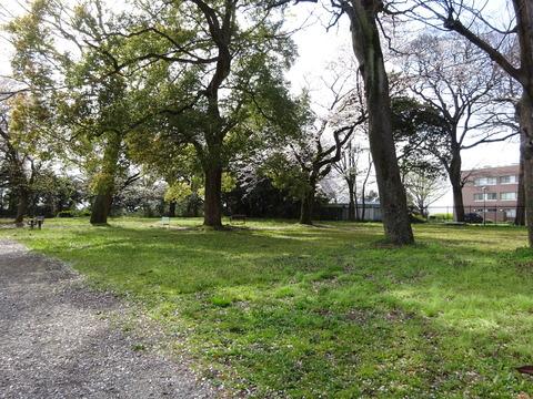 里見公園分園4