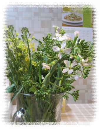 お野菜の花を飾る