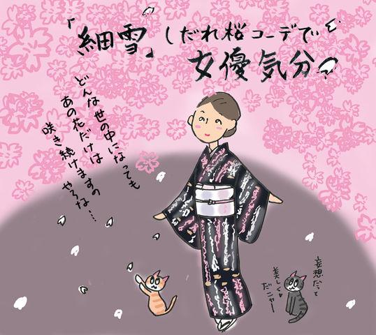 「細雪」気分で妄想のしだれ桜女優コーデ☆の巻 ~着物大好きコミックエッセイスト ほしわにこ連載コラム「オトナの着物生活」